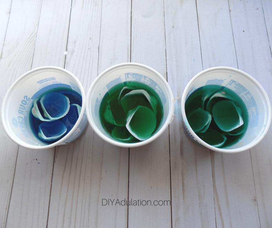 Seashells in Dye Solution