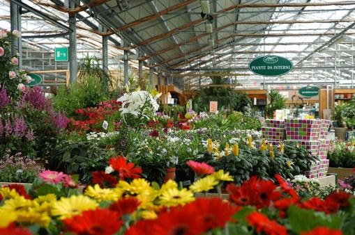 Viridea, garden center