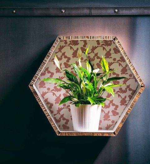 IEG_AbilmPrim_2019_Verdementa_HoneyComb_decoro-piante1