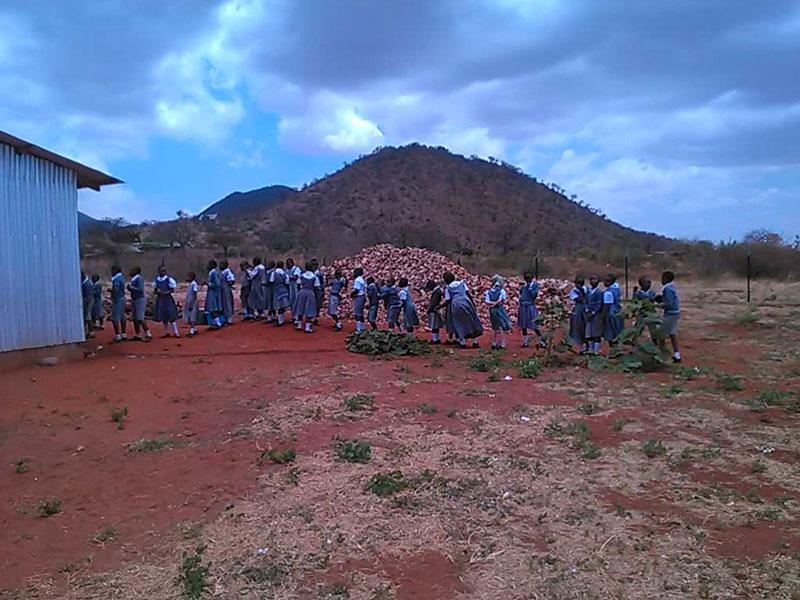 Tanzania, Kongwa: Bambini in fila per il pranzo