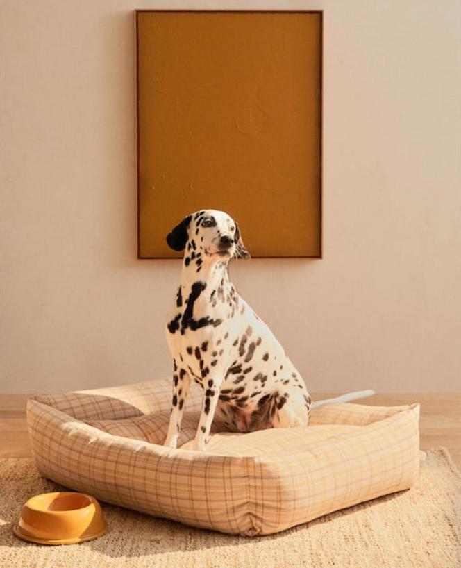 La nuova gamma Pet a marchio Zara