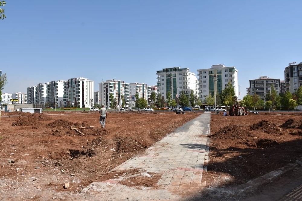 Diyarbakır'a özgü ağaçlar parkta yetiştirilecek