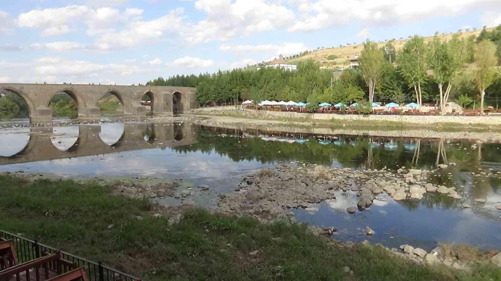 Dicle Nehri'nde balık ölümleri vatandaşları tedirgin etti