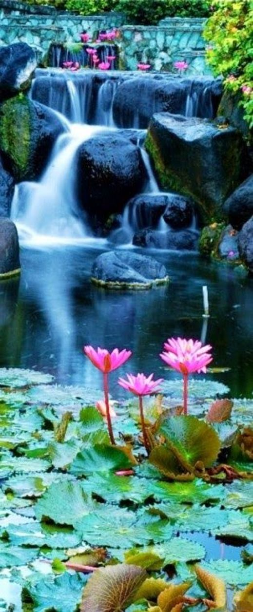 Lotus Blossom Waterfall, located in Bali, Indonesia, has to be one of the most gorgeous things to see in your lifetime.