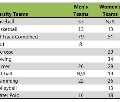 Iona College athletic teams