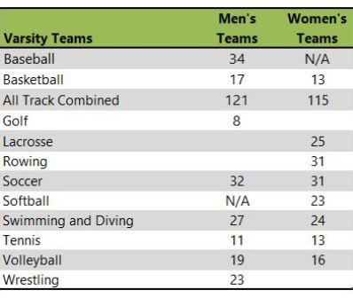 George Mason University athletic teams