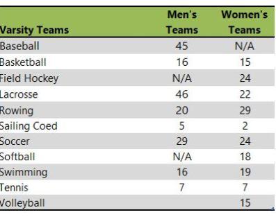 Washington College athletic teams