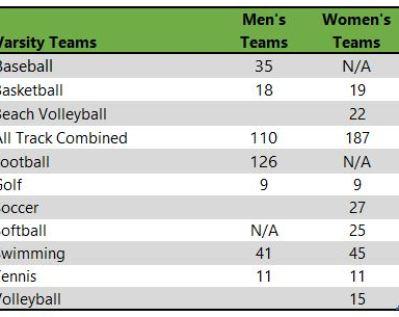 Florida State University athletic teams