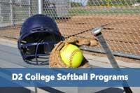 Softball glove representing d2 softball programs