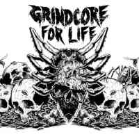 Zine Review: Grindcore For Life 💀🔪