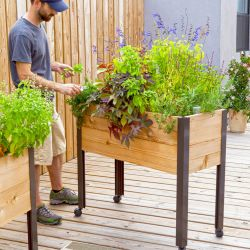 Brilliant 35 DIY Raised Garden Ideas