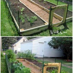 Brilliant 35 DIY Raised Garden Ideas