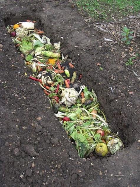 DIY Garden Ideas #22 Beginners Garden Worms And Compost Ideas On