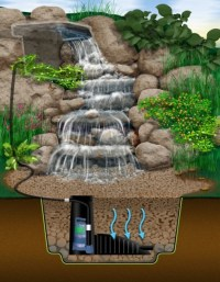 #60 DIY Water Garden Ideas: Container and Pond Water Garden