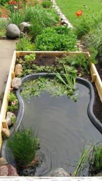 DIY Water Garden Ideas: #54 Pond Garden Ideas and Design