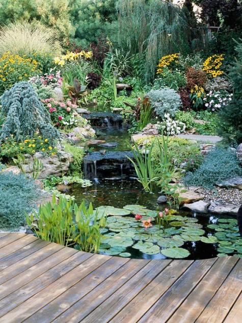 Wildlife Pond Design Ideas