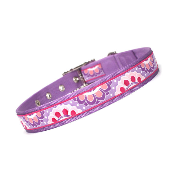 pink and lilac floral medallion metal buckle dog collar (1 inch) by restowe