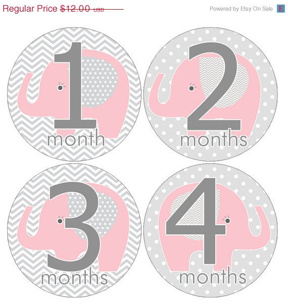 25% Off Sale Set of 12 Round Monthly Stickers Pink Elephants Photo Props Keepsakes – MOSG044 by HeadsUpGirlsBaby