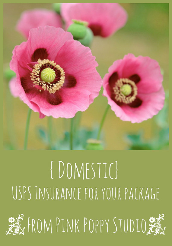 USPS Domestic Insurance Coverage for Pink Poppy Studio by PinkPoppyStudio