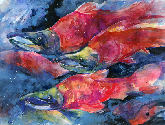 Sockeye Salmon Watercolor Painting, Red Fish Art, – Original abstract watercolor fish painting By Kathy Morton Stanion EBSQ by KathyMortonStanion