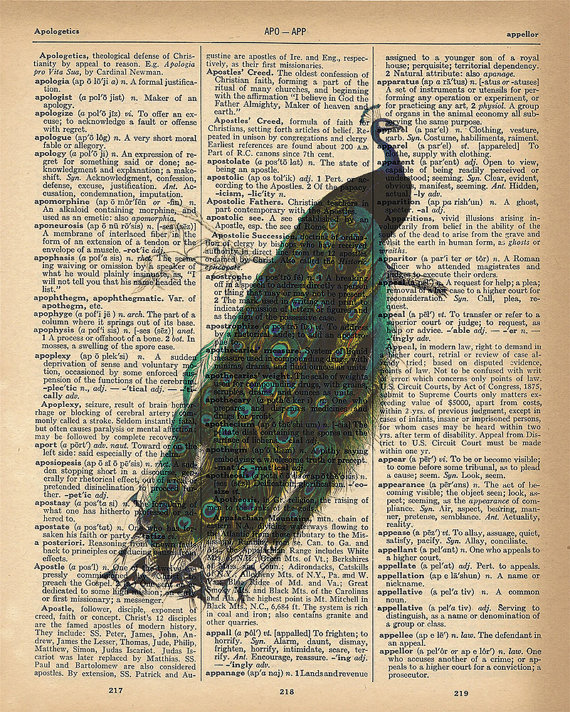 Dictionary Art Print – Beautiful Peacock with Feathers – Upcycled Vintage Dictionary Page Poster Print – Size 8×10 by happylandings