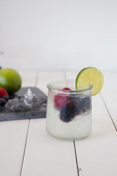 gin-tonic-13