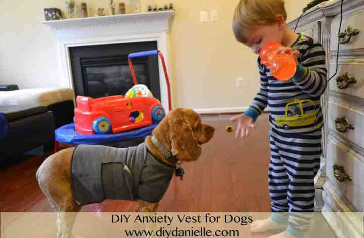 Anxiety Vest for Dogs, DIY