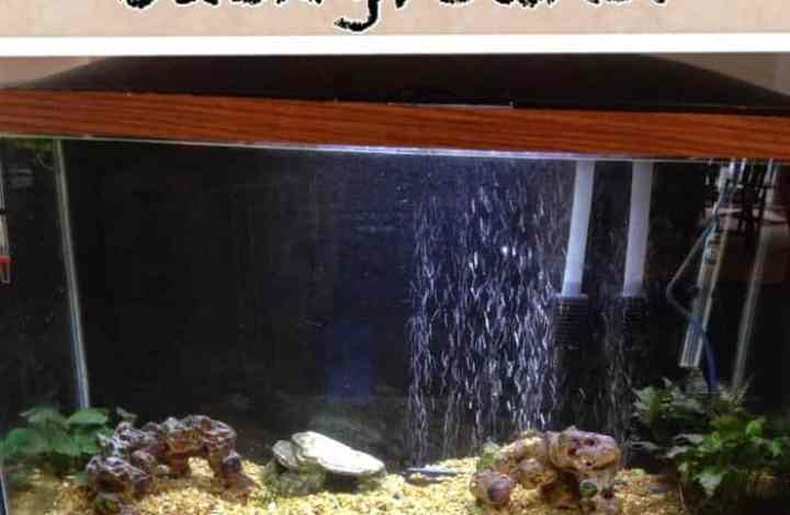 Video Tutorial for a Fabric Aquarium Background: Sew or No Sew