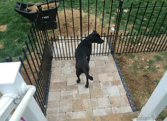 How to Install an Easy No-Dig Fenced Dog Run in One Day