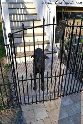 Diy Indoor Dog Fence