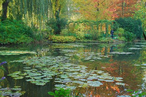 Monet's garden (1/2)