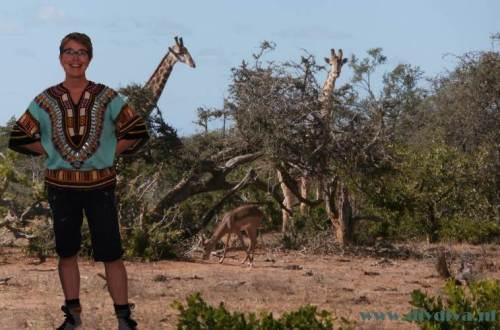 Zuid Afrika tuniek dediydiva