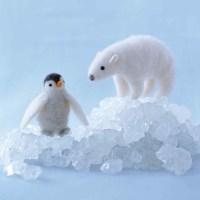 Needle felt with Martha Stewart, a Sweet little Penguin