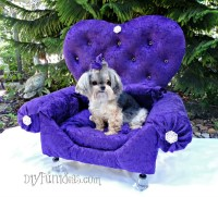 HOW TO MAKE A DIY PRINCESS DOG BED FROM AN OLD DRAWER - Do ...