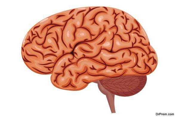 brain-responds