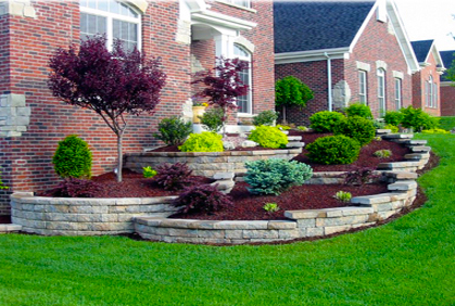 landscaping shrubs and bushes ideas