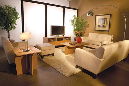 decorating idea small space living room Top Small Living Room Designs Ideas & Pictures