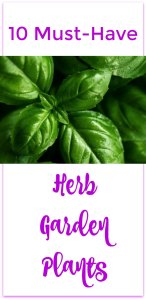 herb garden pin