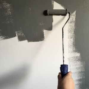 person holding paint roller while painting the wall renovations