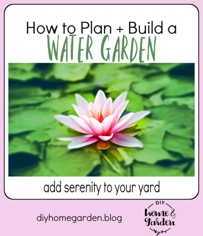 water garden pin