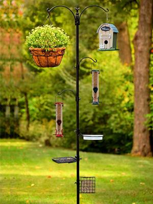 song bird feeding station