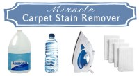 Miracle Carpet Stain Remover Recipe . . . Just 2