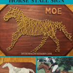 Diy Projects Diy Horse Ownership