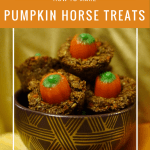 Diy How To Make Pumpkin Horse Treats Diy Horse Ownership