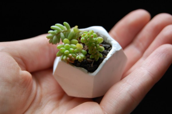 DIY Tiny Polymer Clay Plant Pots