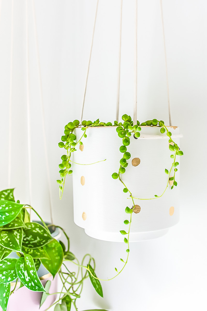 Give A Hanging Planter An Easy DIY Upgrade With Paint And Gold Leaf ...