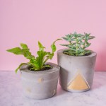 New concrete and gold plant pot designs
