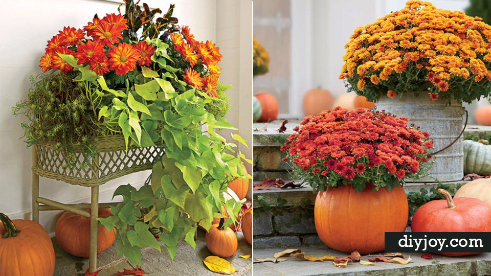 33 DIY Gardening Ideas For Fall DIY Joy