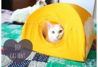 How to Make a Cat Tent DIY Projects Craft Ideas & How Tos ...