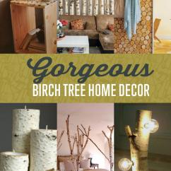 Diy Living Room Light Grey Blue Walls Best Decor Ideas Projects Craft How To S Birch Trees 17 Of The And